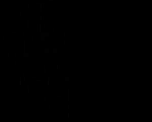 Logowiekszynapis 2